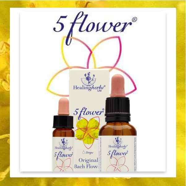Five Flower Notfallmischung
